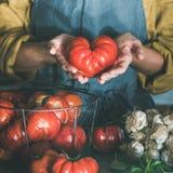 Femme dans le tablier de toile tenant la tomate mûre d'héritage, culture carrée image stock