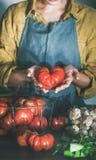 Femme dans le tablier de toile tenant la tomate mûre d'héritage pour la cuisson images libres de droits