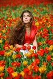 Femme dans les tulipes image libre de droits