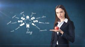 Femme dans un costume tenant la pomme rouge tenant le mur proche avec le croquis d'idée d'affaires dessiné là-dessus Concept des  Image stock
