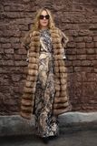 Femme dans un manteau de fourrure Photographie stock