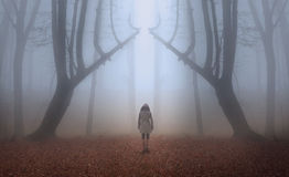 Femme dans une forêt brumeuse pendant l'automne Images stock