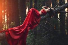 Femme dans une longue seule robe rouge dans la forêt fabuleuse et le myst photo libre de droits