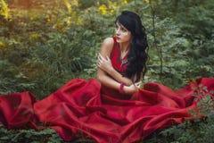 Femme dans une longue seule robe rouge dans la forêt fabuleuse et le myst images libres de droits