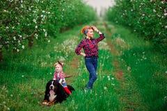 Femme de bébé avec le jardin de Berne de chien au printemps Photo libre de droits