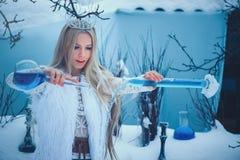 Femme de beauté d'hiver Belle fille de mannequin avec la coiffure et le maquillage en verre de flacons dans le laboratoire d'hive photographie stock libre de droits