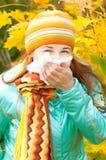 Femme de beauté en automne Images stock