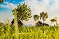 Femme de brune appréciant le mensonge sur elle de retour sur l'herbe verte en nature photos libres de droits