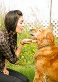 Femme de brune félicitant sa canine de chien de golden retriever Photo stock