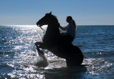 Femme de cheval en mer Photographie stock libre de droits