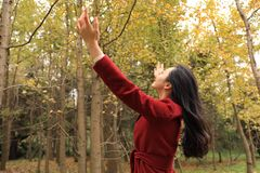 Femme de chute d'automne heureuse dans la pose gratuite de liberté Photographie stock