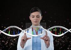 Femme de docteur agissant l'un sur l'autre avec le brin d'ADN 3D Photos libres de droits