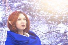 Femme de fée d'Elf images stock