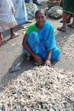 Femme de Fisher dans l'Inde Image stock