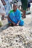Femme de Fisher dans l'Inde Photos libres de droits