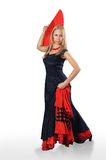 Femme de Flamenko Photo stock