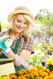 Femme de fleuristes travaillant avec des fleurs Photo stock