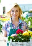 Femme de fleuristes travaillant avec des fleurs Photographie stock