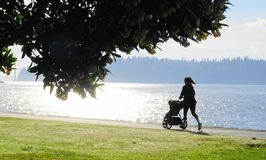 Femme de forme physique courant avec la poussette par l'océan au lever de soleil photos libres de droits