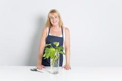 Femme de jardinage avec l'usine D'isolement sur le fond blanc Image stock