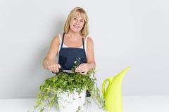 Femme de jardinage avec l'usine D'isolement sur le fond blanc Images stock