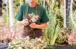 Femme de jardinier créant la décoration grave images libres de droits