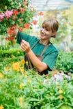 Femme de jardinier dans son magasin prenant soin de quelques fleurs photo stock