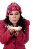 Femme de l'hiver images libres de droits