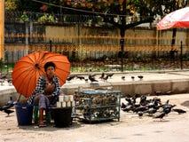 Femme de Myanmar et sa fortune indiquant des oiseaux dans la cage Photographie stock libre de droits