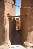 Femme de pelle à poussière Photographie stock libre de droits