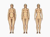 Femme de perte de poids Images stock