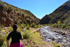 Femme de randonneur augmentant une traînée en Bolivie Photos stock