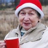 Femme de Santa Photographie stock libre de droits