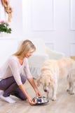 Femme de soin alimentant le chien Photos stock