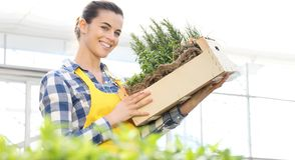 Femme de sourire avec la boîte en bois complètement d'herbes d'épice sur le fond blanc, jardin de ressort image libre de droits