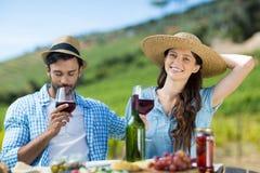 Femme de sourire avec le vin rouge se reposant par l'ami masculin à la table Photographie stock libre de droits