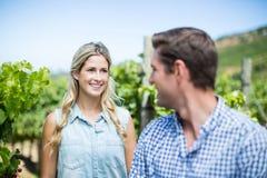 Femme de sourire regardant l'homme dans le vignoble Photo stock