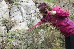 Femme de sourire sélectionnant l'asperge sauvage photos libres de droits