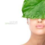 Femme de station thermale de beauté avec une feuille fraîche au-dessus de visage Photographie stock libre de droits