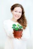 Femme defocused de sourire tenant la plante verte Image libre de droits