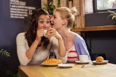 Femme disant le secret à son ami Photo stock
