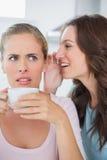 Femme disant le secret à son ami tout en buvant du café Images libres de droits