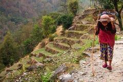 Femme du Népal Photo libre de droits