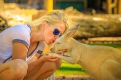 Femme embrassant le kangourou Image stock