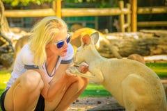 Femme embrassant le kangourou Photographie stock libre de droits
