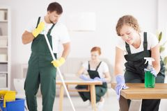 Femme employant le détergent vert de nettoyage photos stock