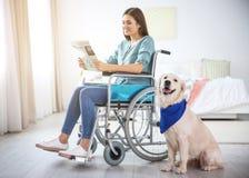 Femme en journal de lecture de fauteuil roulant avec le chien de service images stock