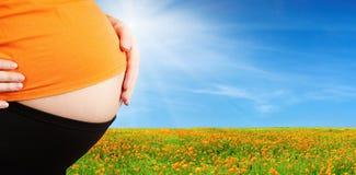 Femme enceinte Photographie stock