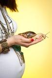 Femme enceinte avec des escargots sur son estomac Photo stock