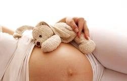 Femme enceinte d'estomac sur le fond blanc Photographie stock